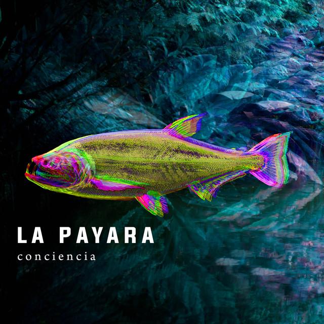 La Payara