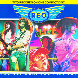 REO Speedwagon Ridin' the Storm Out cover