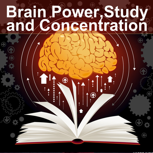 Album cover for Brain Power, Study and Concentration (music for study, focus, study music, music for concentration, concentration music, relaxing piano, piano relaxation , piano ambient, study time, studying music, brain music, memory and concentration for exam) by Various Artists