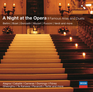 An Evening at the Opera: Famous Arias And Duets Albümü