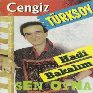 Cengiz Türksoy