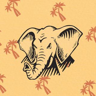 Elephant Convoy