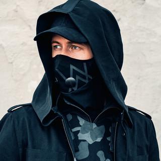 Alan Walker profile picture