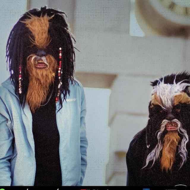 The Wookies