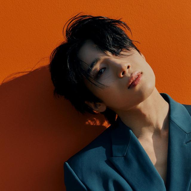 Han Seungwoo