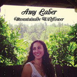 Amy Laber