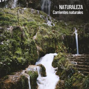 Naturaleza: Corrientes naturales