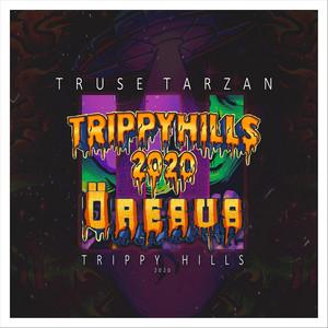 Trippy Hills 2020 cover art