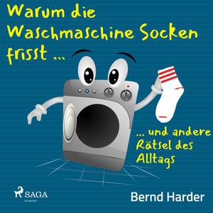 Warum die Waschmaschine Socken frisst ... ... Und andere Rätsel des Alltags Audiobook