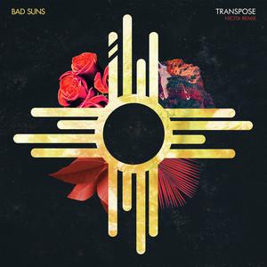 Transpose (Nicita Remix)