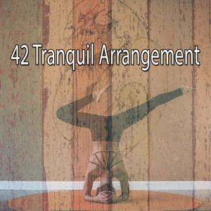 42 Tranquil Arrangement
