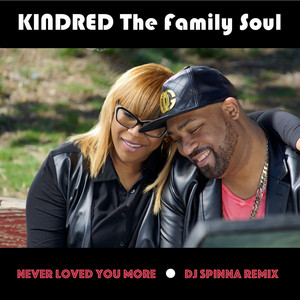 Never Loved You More (DJ Spinna Remix)