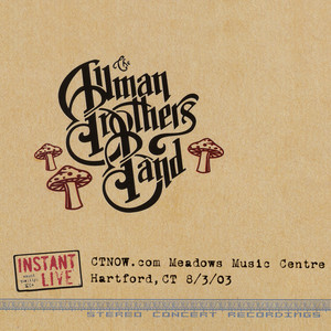 Instrumental Illness (Live at Meadows Music Centre, Hartford, Ct, 8/3/2003) by Allman Brothers Band