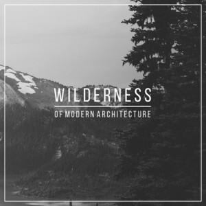 Wilderness album
