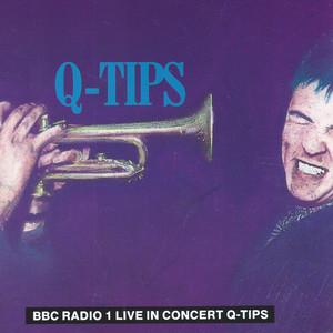 Q-Tips Live In Concert album