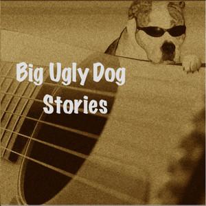 Stories album
