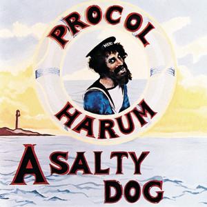 A Salty Dog album