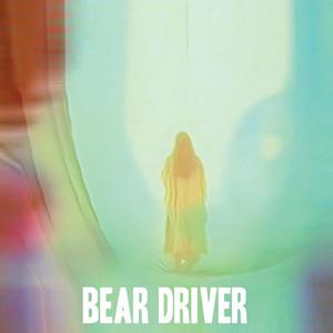 Colours Run by Bear Driver