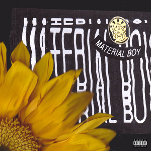 Material Boy (Acoustic)