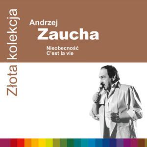 Bezsenność we dwoje by Andrzej Zaucha