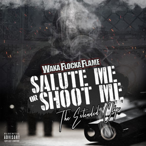 Salute Me or Shoot Me: The Extended Clip