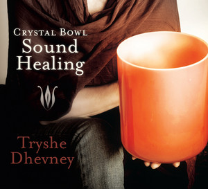 Bright Silence in C-sharp by Tryshe Dhevney