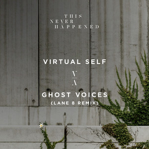 Ghost Voices  -