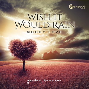 Wish It Would Rain (Moody Love) album