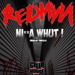 Nigga Whut! (Acapella Dirty) by Redman