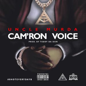 Cam'ron Voice