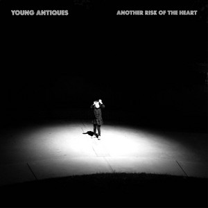 Another Risk of the Heart album