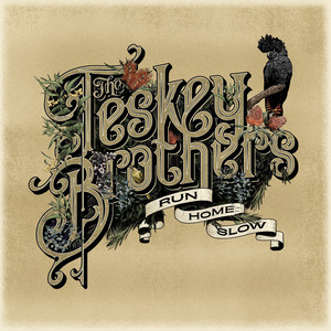 The Teskey Brothers – Hold Me (Studio Acapella)