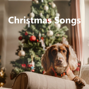Christmas Songs album