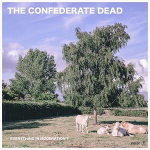 Garden by The Confederate Dead