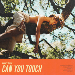 Can You Touch cover art