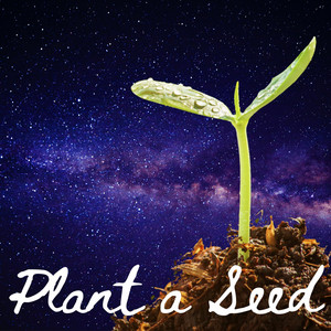 Song of the Day – Plant a Seed by Levity Beet