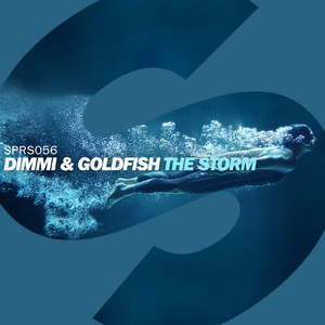 The Storm (Radio Edit)
