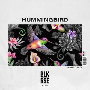 Hummingbird (KAAZE Mix)