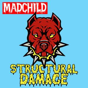 Structual Damage