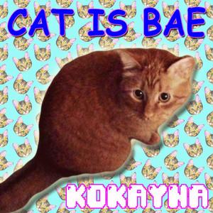 Cat Is Bae