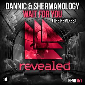 Wait for You (Remixes)