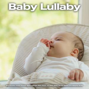 Baby Zen Nature Songs cover art