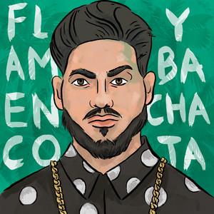 Flamenco y Bachata cover art