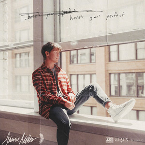 Here's Your Perfect - Jamie Miller