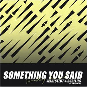 Something You Said