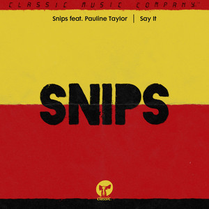 Snips Feat. Pauline Taylor - Say It