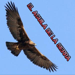 El Aguila de La Sierra