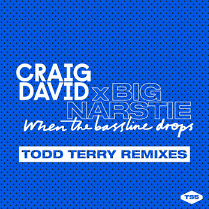When The Bassline Drops (Todd Terry Remixes)