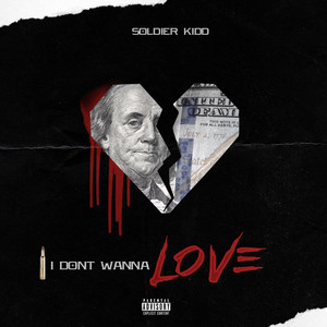 I Don't Wanna Love