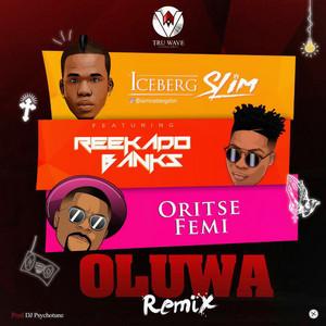 Oluwa - Remix cover art